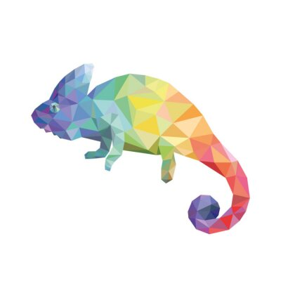 Cuadro El color del camaleón