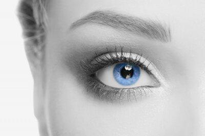 Cuadro El ojo humano