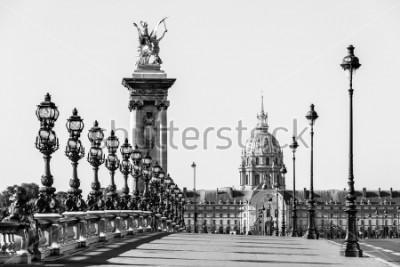 Cuadro El puente Pont Alexandre III sobre el río Sena y el Hotel des Invalides en el fondo en la soleada mañana de verano. Puente decorado con ornamentadas lámparas y esculturas de Art Nouveau. París, Franci