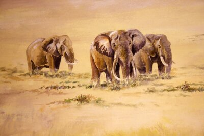 Cuadro Elefante africano, Sudáfrica