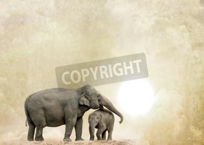 Cuadro Elefantes en un fondo del grunge