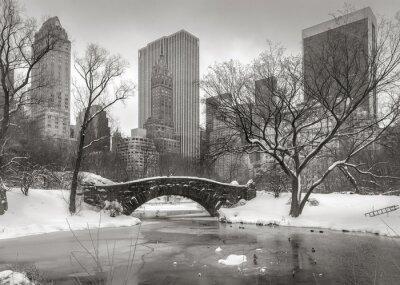 Cuadro Escena del invierno en Manhattan: el Estanque, Puente de Gapstow y Manhatta