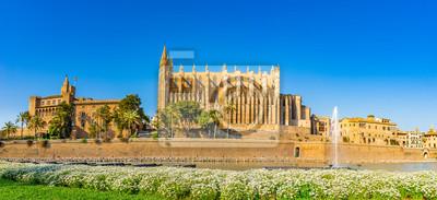 España Palma de Mallorca Catedral La Seu, Palacio Real Almudaina y Parc de la Mar en el casco antiguo