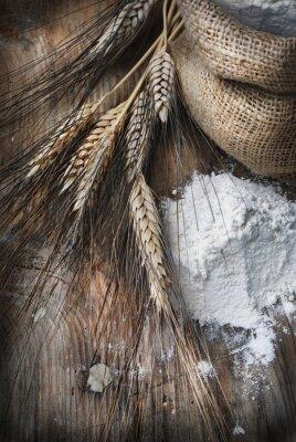 Cuadro Espigas de trigo