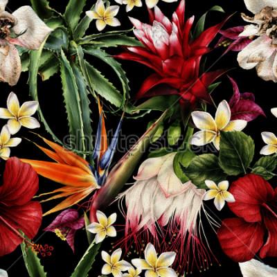 Cuadro Estampado de flores específicas con las flores tropicales, acuarela.