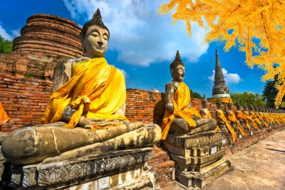 Cuadro Estatuas de Buda en Ayutthaya, Tailandia,