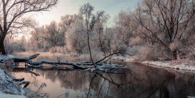 Cuadro Fantástico paisaje de invierno