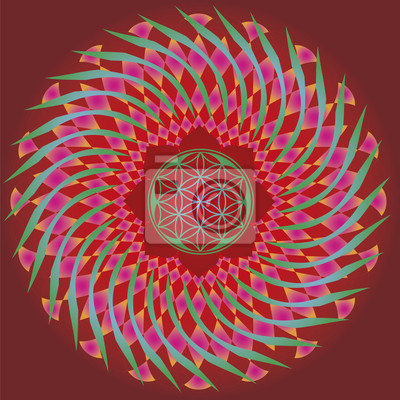 Flor De La Semilla De La Vida Edición De Primavera Mandala Pinturas