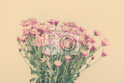 Cuadro Flores De Colores Con Desenfoque Suave En El Tono Pastel Vintage
