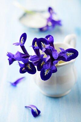 Cuadro Flores de iris púrpuras en una taza de la vendimia