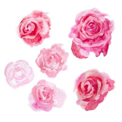Cuadro Flores de la acuarela. rosas