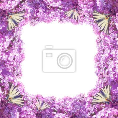 Flores de la lila marco pinturas para la pared • cuadros swallowtail ...