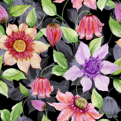 Cuadro Flores hermosas de la clemátide en ramitas que suben contra fondo negro. Patrón floral sin fisuras. Pintura de acuarela. Ilustración pintada a mano.