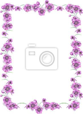 flores marco pinturas para la pared cuadros fotográfico