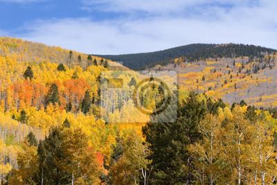 Follaje de otoño