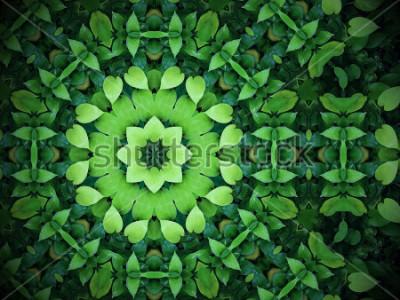 Cuadro Fondo abstracto del verdor, hojas verdes en forma de corazón con efecto del caleidoscopio
