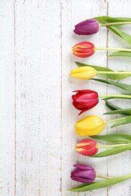Cuadro fondo de los tulipanes