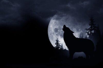 Cuadro Fondo del lobo del grito