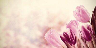 Cuadro Fondo floral del vintage del día de fiesta
