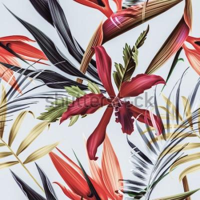 Cuadro Fondo transparente de flores tropicales, plantas y hojas