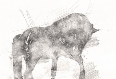 Cuadro freehand horse head pencil drawing