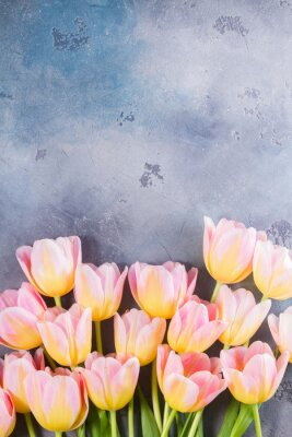 Cuadro Frontera de tulipanes de color rosa y amarillo sobre fondo de piedra gris con espacio de copia