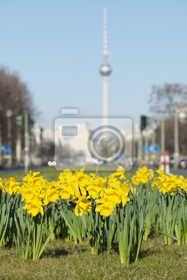 Cuadro Frühling en Berlín
