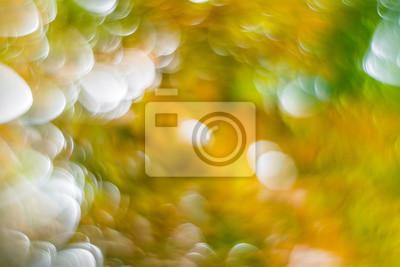 Frühling Hintergrund Bokeh - Primavera de fondo