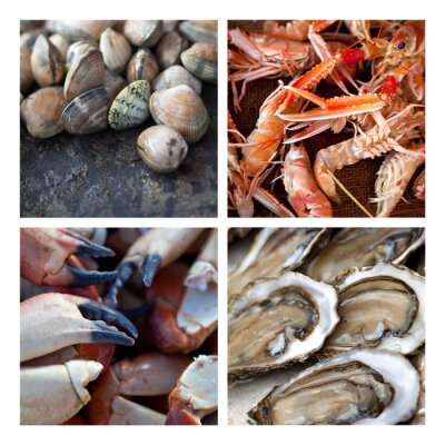 Cuadro Frutas Coquillages Crustaces de mer marée pêche