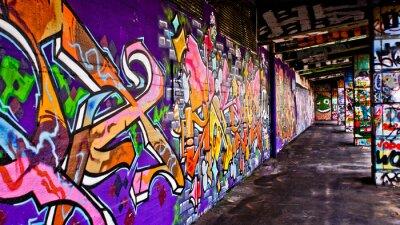 Cuadro Gang Graffiti