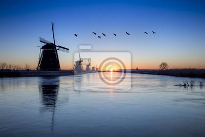 Gansos volando sobre el molino de viento Kinderdijk Salida del sol, Alblasserdam, Países Bajos