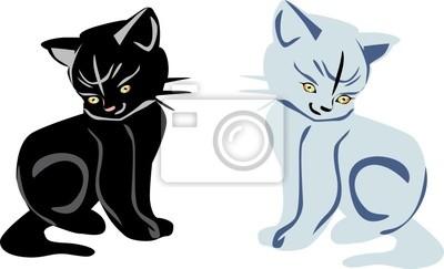 gatitos blanco y negro sobre blanco