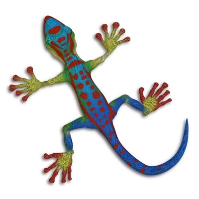 Cuadro Gecko lagarto