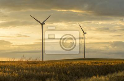Generadores de viento turbinas en la puesta del sol el paisaje de verano