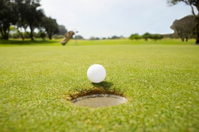 Cuadro Golf ball at the edge of the hole