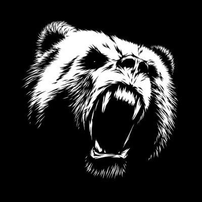 Cuadro Grabar oso ilustración
