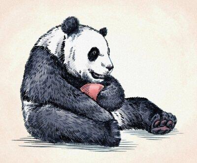 Cuadro Grabar tinta dibujar panda ilustración