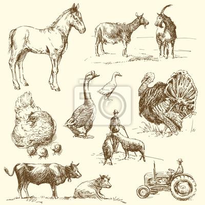 granja - colección de dibujado a mano