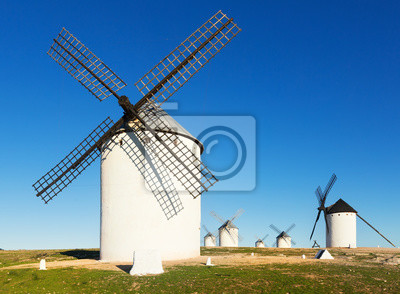 Group of windmills in sunny day