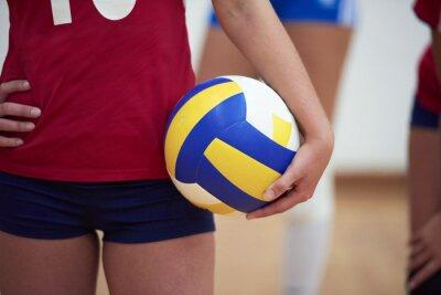 Cuadro Grupo de la mujer de voleibol