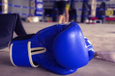 Cuadro Guante de Boxeo Azul