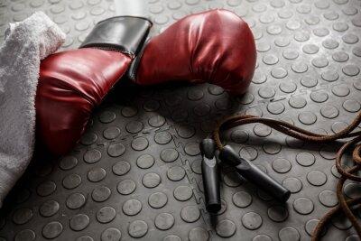 Cuadro Guantes de boxeo y cuerda