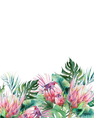 Cuadro Hand drawn greeting card design with exotic leaves and protea flowers isolated on white background. Palm tree, banana leaves, mostera plants