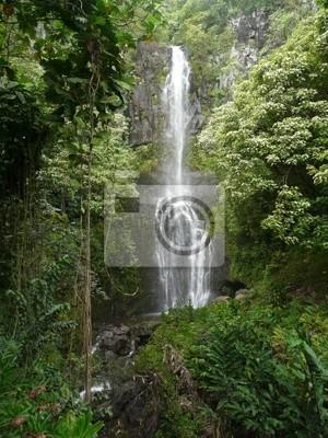 Hawaiian cascada tropical
