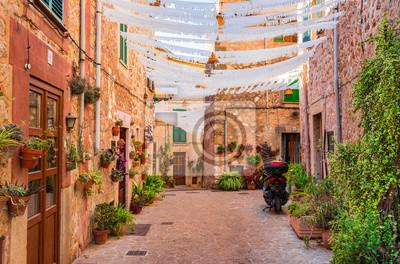 Hermosa calle con flores en Valldemossa Mallorca España