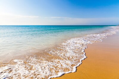 Cuadro Hermosa playa del océano