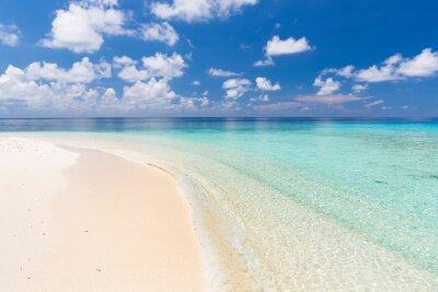 Cuadro Hermosa playa del océano en Maldivas