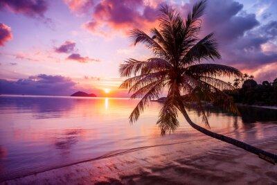 Cuadro Hermosa puesta de sol brillante en una playa de paraíso tropical