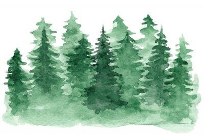 Cuadro Hermoso fondo de acuarela con bosque de coníferas verde. Misterioso abeto o pinos ilustración para el diseño de Navidad de invierno, aislado sobre fondo blanco.