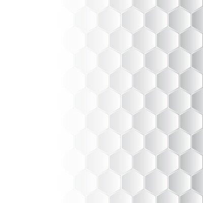 Cuadro Hexagonal mosaic